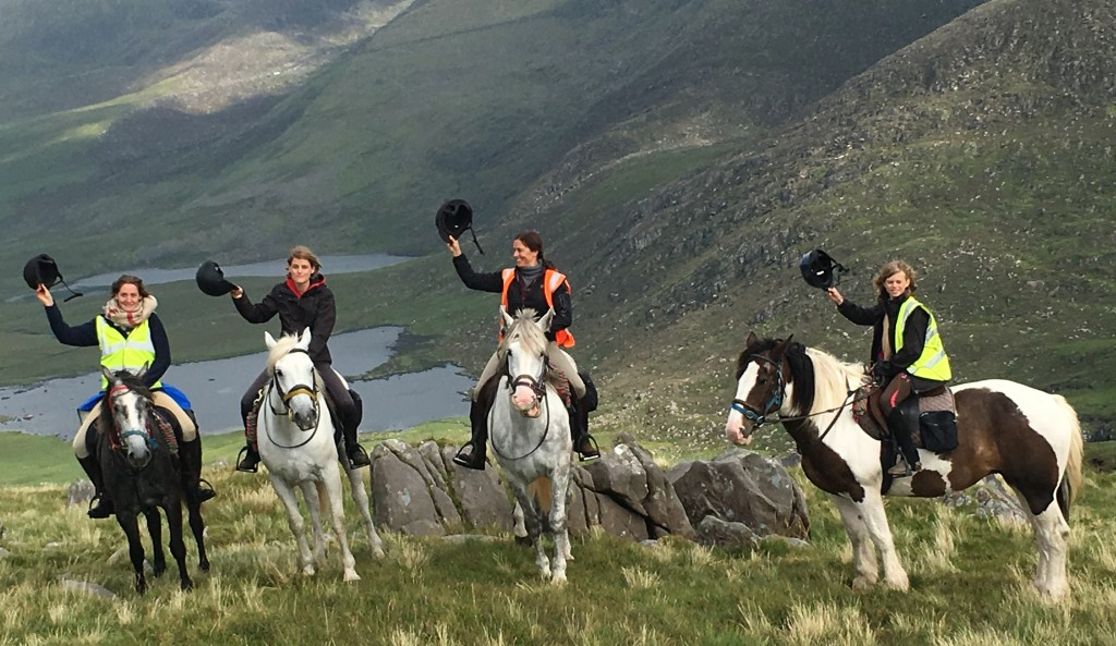 Horses on the Conor Pass