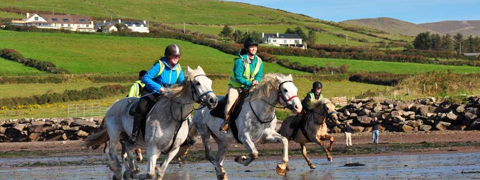 Horse riding holidays & day treks in Dingle, Ireland by