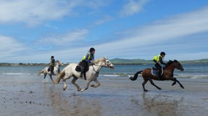 Dingle Horse Riding - Ireland