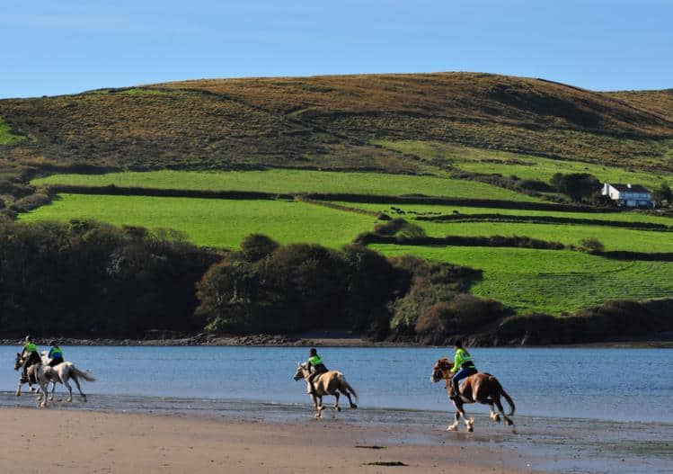 Dingle Horse Riding