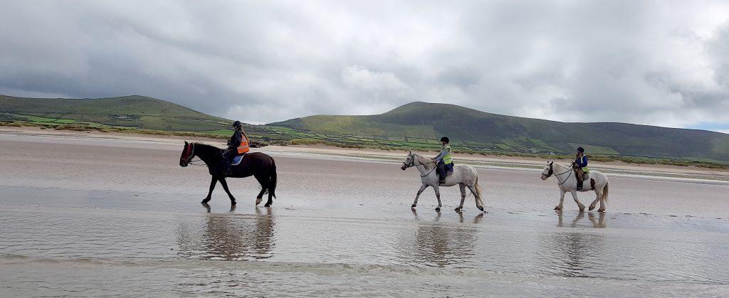 Winter Beach Horse Treking