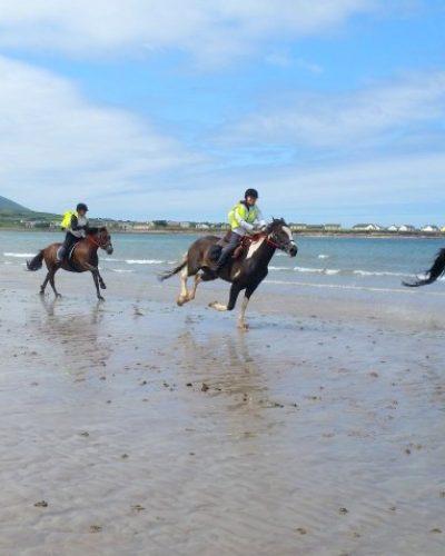 Dingle Horse Riding Treks on the Beach