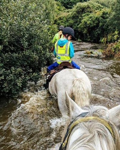 Horses on the river crossing