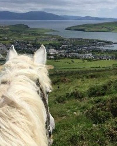Overlooking Dingle Town